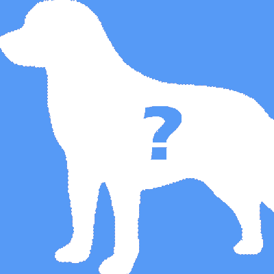 Other (a dog not listed here)